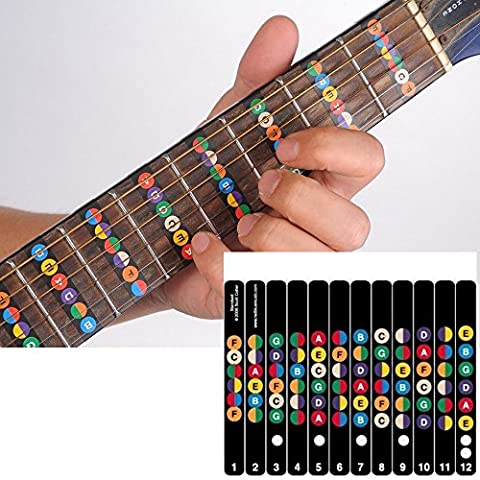 Guitar Fretboard Note Decals (Colorful)