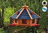 BTV Ölbaum Massivholz-Vogelhaus Hellbraun/orange + 3X Landestation rot, groß, XL mit Landebahn + LED - Beleuchtung/Licht + Bitumen, Massivholz,wetterfest, mit Silo/Futtersilo für Winter
