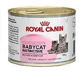 Royal Canin Katzenfutter Feline Babycat Instinctive 195 g, 6er Pack (6 x 195 g)