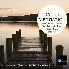 Cello Concerto in E flat major RV 408: II Largo