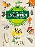 Mitmachen und Entdecken: Insekten und andere Krabbeltiere