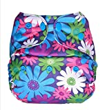 Bumberry Reusable Diaper Cover and 1 Natural Bamboo Cotton Insert (Purple Flowers)
