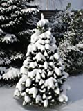 TOP Weihnachtsbaum kuenstlich 180cm - 5