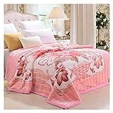 Decken Werfen Raschel weiche Flauschige gemütliche Dicke rosa Blumenmuster Schlafcouch 200 * 230 cm WYQLZ