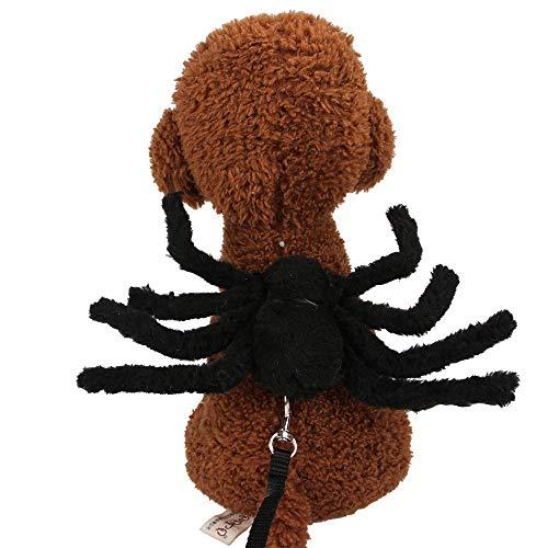 Kostüm Fledermaus Fuß - FZ FUTURE Halloween Lustiges Haustier Kostüm, Simulation Plüsch Spinne kleiden Nettes Cosplay, für Halloween, Partys, Feste-Größe Passend Mit Zugseil,Schwarz,S
