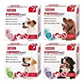 Beaphar FIPROtec Dog Spot On Flea & Tick Solution (Large Breed, 6 Pipette ~ 6 Treatment) from Beaph-ar