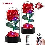 Beauty Enchanted Rose con Luce A LED Kit Rose Rosa Rossa in Seta Miglior Regalo per Il Suo Anniversario di Compleanno San Valentino Rosso Set di 2