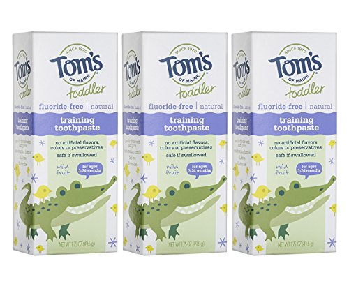 Tom's of Maine Toddlers Fluoride-Free Natural Toothpaste in Gel, Mild Fruit, 1.75 Ounce, 3 Count by Tom's of Maine