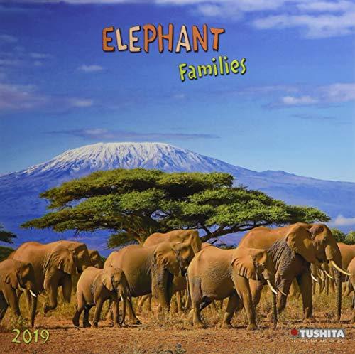 Elephant Families 2019 What a Wonderful World: Elefanten-Familien