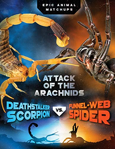 Deathstalker Scorpion vs  Funnel-Web Spider: Attack of the Arachnids (Epic  Animal Matchups)