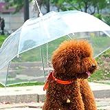 Ombrello per animali domestici, trasparente e impermeabile, con guinzaglio