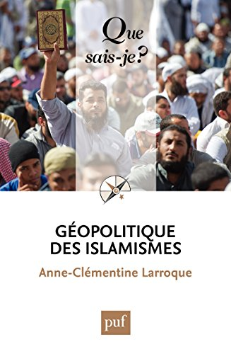Géopolitique des islamismes: « Que sais-je ? » n° 4014