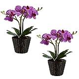2er Set LED Orchideen Blumen Topf Tisch Leuchten Blätter Kunst Pflanze Beleuchtungen
