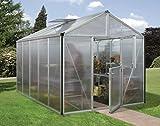 Gartenwelt Riegelsberger Gewächshaus Zeus - Ausführung: 10000 HKP 10 mm Alu, Fläche: ca. 10 m², mit 2 Dachfenster, Fundamentmaß: 2,66 x 3,99 m