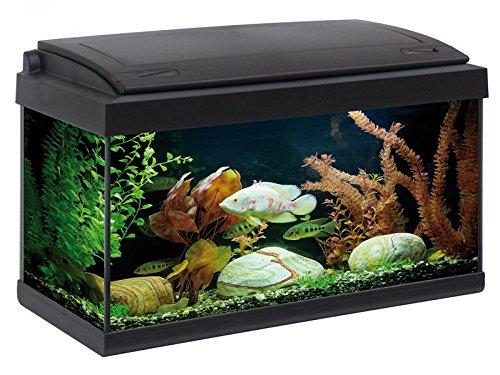 acquario accessoriato completo milo 60x30 (nero)