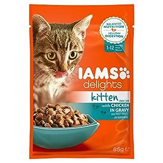 IAMS Kitten Delights, Chicken Gravy, 85 g 15
