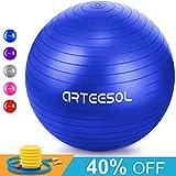 Arteesol Gymnastikball