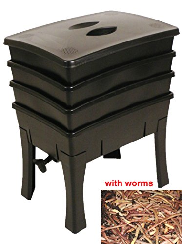 Roundpoint Extra Large Easy to Use COMPOSTING WORMERY with WORMS(Black)