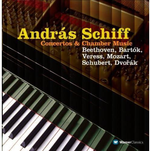 Piano Concerto : III Allegro molto