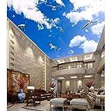 BIZHIGE Papier Peint Personnalisé pour Plafond De Ciel De Nuage pour La Salle De Cuisine De Hall,208 X 146Cm (6.8X4.8 Ft) - Can Be Customized