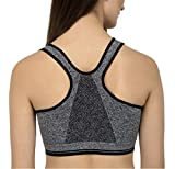 Shoppy Villa Women's Cotton Padded Sports Bra (Grey,Free Size, 30-36)