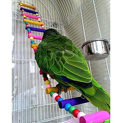 Rope Ladder Rainbow Bridge Bird Toy 27 Inch 3