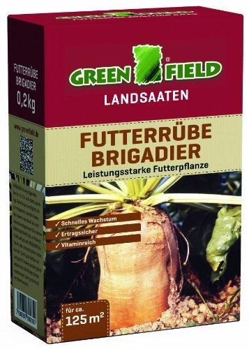 Greenfield 63795 Betterave fourragère général de brigade 200 g pour 125 qm