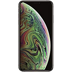 Apple iPhone Xs Max (Space Grey, 3GB RAM, 256GB Storage)