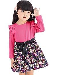 Vestido niña ❤ Amlaiworld Vestido de fiesta princesa de niñas Bebé Ropa de trajes Faldas de manga larga de impresión floral para bebés…