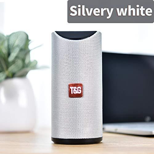 Etbotu,Bluetooth Lautsprecher,Tragbarer Außenlautsprecher Drahtlose Mini Säule 3D 10 Watt Stereo Musik Surround Unterstützung FM TF Karte Bass Box,Silber