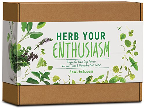 Herb Your Enthusiasm Gift Seed Kit. 6 Delicious, Grow Your Own Varieties Packed with Flavour
