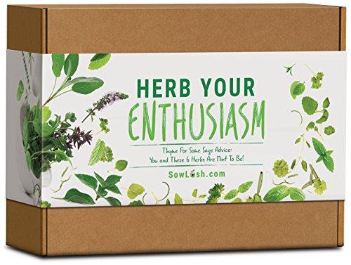 sow lush herb your enthusiasm, kit regalo con semi, 6 deliziose varietà di erbe aromatiche piene di sapore