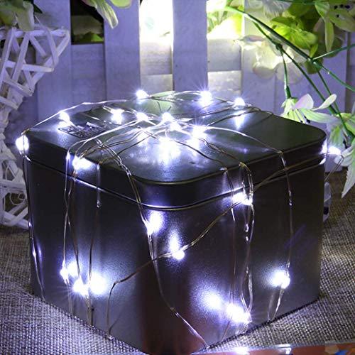 Party 100 LED Lichterketten, Lichterketten Batteriebetrieben, IP67 Wasserdichter Kupferdraht Weiße Weihnachtsdekorative Lichter für Außen, Innen, Hochzeit, Garten, Pavillon 1/2/3/4/5/10 Meter (1m)