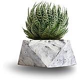 Paradox Origami Cement Planter / Vase / Flower Pot / Home decor
