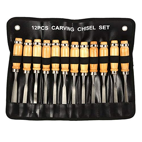 Cinceles Tallado madera Juego Herramienta manual Carpintería Torno Gubias Herramientas Escofina madera (12Pcs)