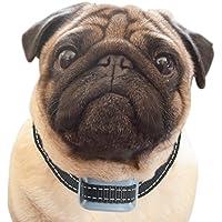 petsol inteligente avanzado antiladridos Collar Detener Barking perro, fiable paradas perros perros de forma segura y civilizada.