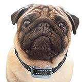 PetSol intelligentes, fortschrittliches Halsband gegen Hundegebell, wiederaufladbar, stoppt das Bellen des Hundes zuverlässig, sicher und menschlich