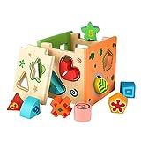 Peradix Lernspielzeug Sortierung Geometrie Spielzeug Intelligenz Ziegel Kätschen aus Holz für Babys 1 bis 3 Jahre (Bunt-IT)