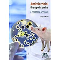 Antimicrobial therapy in swine. A practical