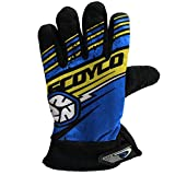 #3: SCOYCO MOTORCYCLE RIDING GLOVES By AllExtreme BLUE COLOUR BIKING & RACING
