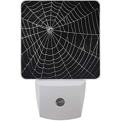 Satz von 2 Pretty Scary Horror Spinnennetz