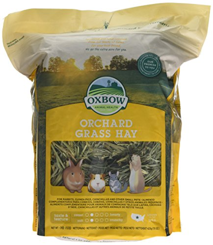 Oxbow Orchard Grass Hay, 425 g 1