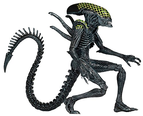 "Figura de Acción Alien vs. Predator Serie 7 AVP ""Grid Alien"" 2"