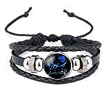 Dunbasi 12 Sternzeichen Armband Glas Cabochon Horoskop Anhänger Silber Armschmuck Herren Leder Armbänder Verstellbare Kette (Fische)