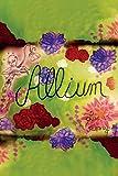 Allium (English Edition)