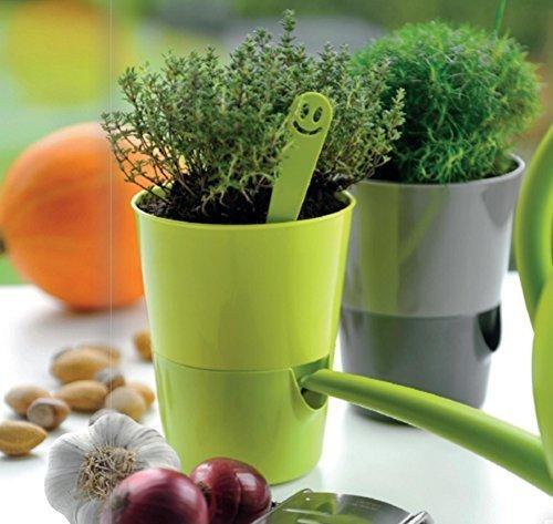 Plastia Kräutertopf Bewässerungstopf 'Rosmarin' mit Wasserspeicher Ø 11cm in 4 Farben, Farbe:Gelb + Grün