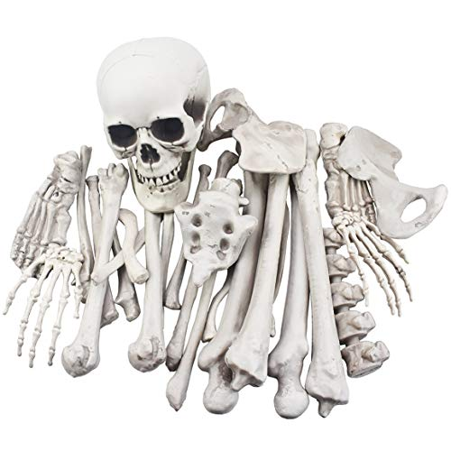 XONOR 28 Piezas de Esqueleto de Huesos y Calavera para...