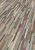 EGGER Home Laminat in Holzoptik - EHL008 Dimas Wood bunt (7 mm Stärke, 10 Dielen = 2,481 m² im Paket, bunt) Laminatboden - praktisch und wertbeständig