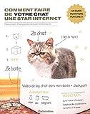 Comment faire de votre chat une star Internet