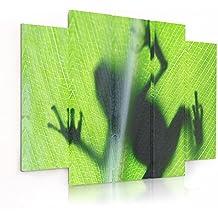 Feeby Frames, Cuadro en lienzo - 5 partes - Cuadro impresión, Cuadro decoración, Canvas (RANA, VERDE) 100x150 cm, Tipo B